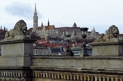 View of Buda Castle Hill from Széchenyi Chain Bridge (Normann) Tags: hungary budapest bridge statue