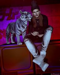 🐅 (kev Brunswick ...) Tags: jian burley noir festyle kalback shoeminati secondlife tiger