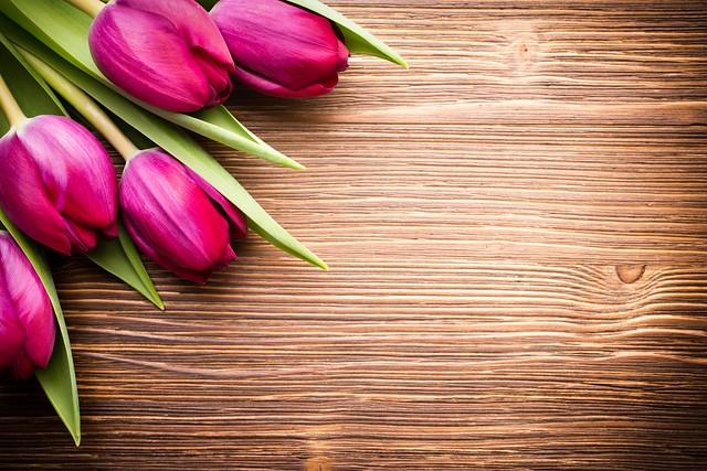 Обои цветы, букет, fresh, wood, pink, flowers, beautiful, tulips, розовые тюльпаны картинки на рабочий стол, раздел цветы - скачать