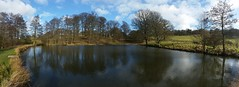 Row Ponds (Week 32/52) (Mick PK) Tags: haedwick rowponds hardwickpark nationaltrust bolsoverdistrict derbyshire eastmidlands england uk cameraphone hdr panorama samsunggalaxys5 samsung galaxy s5 trees fence winter february sky cloud clouds grass green