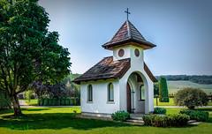 Horse Show-Equine Center Kalosca, Hungary-3 (Petite Chapel).jpg (bowdoc2012) Tags: 2018 eetours hungary budapest