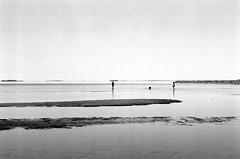 n08740528a (leevil2010) Tags: canon50mmf18 ilfordfp4 ilfosol3 oulu pacificimageprimefilmxe voigtländerbessar2 northernostrobothnia finland fi sea beach