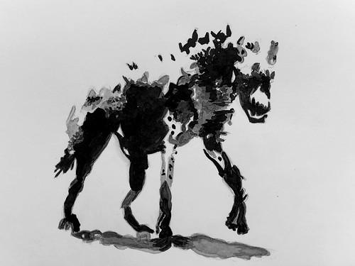 Hyène en clair-obscur (2)