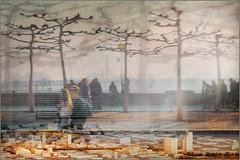 Displacements 2 (Eva Haertel) Tags: eva haertel landscape landschaft cityscape city stadt street strase trees bäume menschen people glas slass schaufenster window modell model miniature promenade horizont horizon spiegelung reflection verschiebung displ displacement structure texture