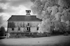 The Old Barn (Anitab) Tags: infrared barn pennsylvania weeping willow