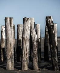 Untitled (Wouter de Bruijn) Tags: fujifilm xt2 fujinonxf56mmf12r pole post lines line outdoor bokeh depthoffield wavebreaker beach strand paalhoofd oostkapelle veere walcheren zeeland nederland netherlands holland dutch