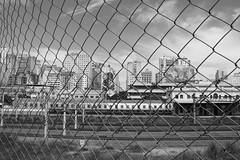 Belo Horizonte - Rua Sapucaí (brenofs) Tags: belo horizonte minas gerais brazil