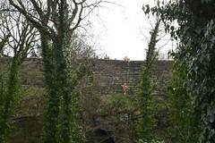 Chester 010319_DSC3208 (Leslie Platt) Tags: exposureadjusted straightened cheshirewestchester chester thewallsofchester vegetationclearance