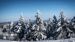 Winter mountain landscape (WDnet) Tags: winter landscape snow sky blue tree snowy sun mountain forest beautiful nature cold mountains frost christmas background white season hill outdoor travel house spruce scenic wood sunny weather scenery ski europe poland slovakia frozen ice adventure journey carpathian majestic view cloud wonderful panorama wonderland trip activity skiing freeze frosty wintertime d5300