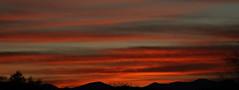 Sunrise 1 16 19 #03 Panorama (Az Skies Photography) Tags: sun sky skyline skyscape rio rico arizona az riorico rioricoaz arizonasky arizonaskyline arizonaskyscape cloud clouds red orange gold salmon black january 16 2019 january162019 11619 1162019 canon eos 80d canoneos80d eos80d canon80d arizonasunrise rise sunrise morning dawn panorama