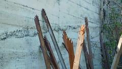 DSCN6147 Montfarville, D355 Rue de la Croix Odin (Thomas The Baguette) Tags: barfleur montfarville valdesaire rape colza cotentin manche lamanche lemoulard lasambiere calvaire oratoire crabec moulin