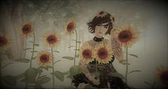 Dreams Of Spring (Nancy Sinatra photography) Tags: spring sunflowers photography edit flower photo woman lady second life dreamer dreams