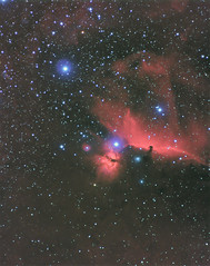 Horsehead_180mm_F3.3_Atik_One_win_DxO_DxO (robfarmiloe) Tags: orion one flame horsehead ic434 milkyway running atik nikkor 180mm ed f28 60 man nebula astrophotography space