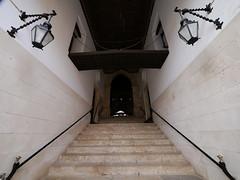 """CoronaMallorcaGem19  111 <a style=""""margin-left:10px; font-size:0.8em;"""" href=""""http://www.flickr.com/photos/122939928@N08/47000428472/"""" target=""""_blank"""">@flickr</a>"""