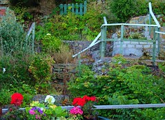 Secret Garden Anglesey July 2018 (mrd1xjr) Tags: secret garden anglesey july 2018 sony hx60v
