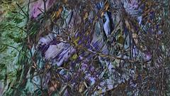 Bildschichten Am Fluss 35 Wieltsee (wos---art) Tags: bildschichten fluss river wasser water unterwasser underwater gestrüpp bäume baum verbrand ausgehöhlt rus äste ufer