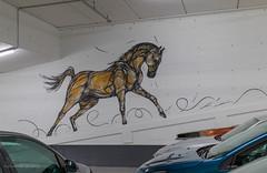 Horse Power (Cheetah_flicks) Tags: beeldendekunst dzia europa plaatsen kunstenaarsgrafischontwerper instagram belgië streetart fotoprojectjes parkingstadsschouwburgantwerpen antwerpen antwerp belgium europe