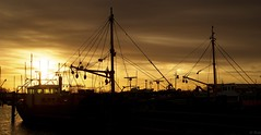 Yerseke (Omroep Zeeland) Tags: yerseke mosselhaven mosselkotter mast vissersboot haven zonsondergang sunset
