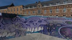 Skate park skill (BenoitGEETS-Photography) Tags: sony a6000 bruxelles brussels streetphoto skatepark têtedemort deathhead crane death mort blue bleu azul blauw graph graphe grafiti grafitti tag