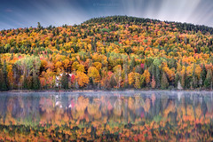 Dawn of Autumn (PIERRE LECLERC PHOTO) Tags: dawnofautumn autumn fall dawn nature landscape fallcolors autumnlandscape quebec canada canadianlandscapes forest trees fallfoliage autumncolors mauricie lamauricienationalpark lake calm reflection house lakeshore houseonthelake mist fog peaceful haunted solitude awayfromitall zen places travel mountains hills cabin pierreleclercphotography