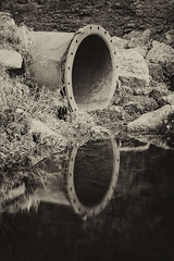 Week 9 Reflections (Carol Dunham) Tags: pond reflections projectsunday