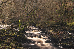 Meandering With Tranquility (Brian Travelling) Tags: tranquil tranquility meandering forest walk waterfall water longexposure slow shutter speed rocks moss trees bushes pentax pentaxdal pentaxk20d peace peaceful calm quiet