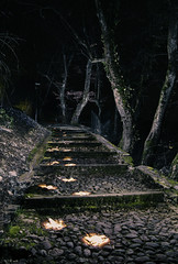 Monter les marches (bouky1) Tags: light lightpainting dark night nightscape hautesavoie faverges stairs ambiance