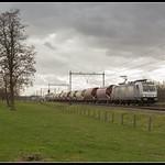 Lineas 186 387, Oost-Maarland thumbnail