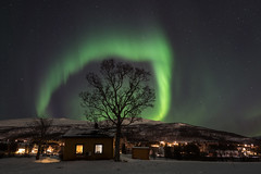 l'arche verte (jarguel) Tags: aurore aurora northernlights leica leicaq norvège norway night astronomy astronomie lights tromsø