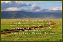 Happy St. Patrick's Day (Jill Clardy) Tags: africa tanzania vantagetravel safari 201902214b4a0784edit ngorongoro crater irish blessing text st patricks day