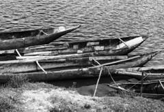Boats / Лодки (dmilokt) Tags: чб bw черный белый black white dmilokt природа nature пейзаж landscape река river лодка boat