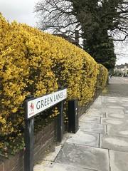 Green Lanes (Nina Childish) Tags: londonboroughofenfield palmersgreen n13 greenlanes northlondon london street pavement