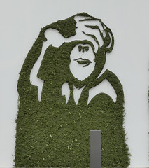 Mister Ride - Ne pas voir (Thethe35400) Tags: artderue arteurbano arturbain arturbà arteurbana calle fresque grafit grafite grafiti graffiti graffitis graff mural murales muralisme plantilla pochoir stencil streetart schablone stampino tag urbanart wall végétal vegetal green singe singes monkeys