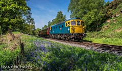 33102 | Basford Curve | 21st May '18 (Frank Richards Photography) Tags: 33102 diesel sophie sulzer churnet valley railway cvr moorlands bluebell blue basford curve staffordshire uk england nikon train locomotive class33 class33102 chedderton froghall consall may 21st 2018