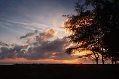 IMG_6951 ~ beginning of the day (alongbc) Tags: sunrise silhouette tree nature cloud sea sky coast seascape shoreline pantaisenok senokbeach senok kotabharu bachok kelantan malaysia travel place trip canon eos700d canoneos700d canonlens 10mm18mm wideangle