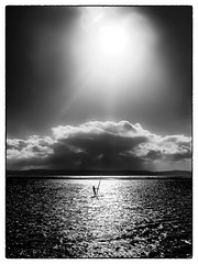 083 Windsurfing (georgestanden) Tags: blackandwhite black white monochrome desaturated photo photography photograph bnw iphone mobile mobilephone iphonephotography iphonephoto iphonephotographer art picture photooftheday blackwhite iphone6s windsurfing marinelake lake westkirby wirral merseyside water sport people clouds sunny sun fineart reflection isolated watersport sky sea ountains
