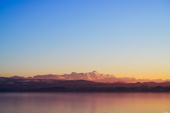 Warm sunset (Rico the noob) Tags: dof z7 landscape sunset nature water germany city outdoor lake trees urban 2470mmf4 tree sky published 2470mm 2019 mountains mountain
