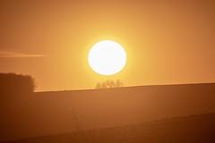 Kurz vorm Sonnenuntergang / Just before sunset (reipa59) Tags: sonne sun sunset sonnenuntergang sky dusk wolken abends palatinate landstrase north nordpfälzer abensrot afterglow red rot landschaft landscape