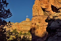 The Moon Was Teed Off Over a Rise in the Distance (Capitol Reef National Park)