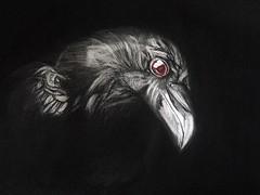 POSSESSED 5 (Sketchbook0918) Tags: crow bird corvid wildlife animal illustration portrait drawing eye feathers