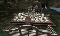 Anyone for Chess (Becks (Rebecca)) Tags: chess pawn king queen becks secondlife sl avatar avi playing game board