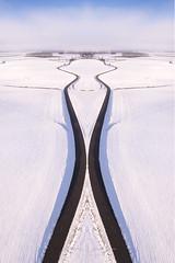 Symétrie hivernale (jeje62) Tags: dji symétrie aerialphotography aérien blanc ciel drone droneshoot dronestagram france hauteur hiver landscape neige pasdecalais paysage phantom4 snow symetrie vueaérienne white winter