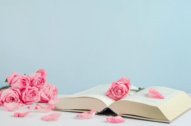 Обои цветы, розы, лепестки, книга, розовые, бутоны, pink, flowers, romantic, petals, roses, cute картинки на рабочий стол, раздел цветы - скачать