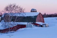 Dawn (jenny_miner) Tags: winter wisconsin barn farm snow red winterscene farmstead buildings oldbuilding rustic