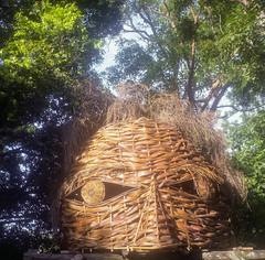 All Seeing (BunnySafari) Tags: yashicamat124g december woodfordfolkfestival201718 2017 woodford porta160 sculpture woodfordia film summer