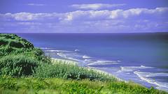 Atlantic Ocean near Highland Light (woodchuckiam) Tags: atlanticocean highlandlight capecod massachusetts sky clouds ocean water beach sand waves vegetation bushes flowers scenic landscape woodchuckiam