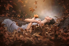 Scattered ({jessica drossin}) Tags: jessicadrossin portraits leaves leaf light woman girl dress blue orange brown falling fall autumn dream wwwjessicadrossincom