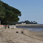 Profiter du soleil d'hiver, Andernos-les-Bains, Gironde, Aquitaine, France. thumbnail