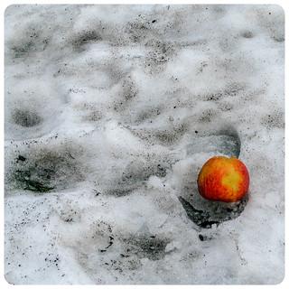 Lost Apple in a Footprint
