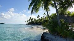 Polynésie 2019 - Bora Bora (Valerie Hukalo) Tags: beach plage borabora polynésiefrançaise polynesia pacificocean océanpacifique hukalo valériehukalo pearlbeachresort archipeldelasociété archipel island île océanie polynésie ocean france frenchpolynesia oceania